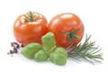 illust-tomates